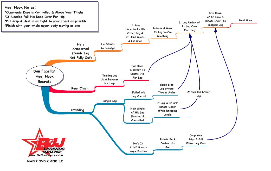 Study Guide: Dan Fagella's Heel Hook Secrets